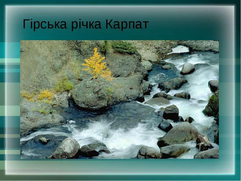 Гірська річка Карпат