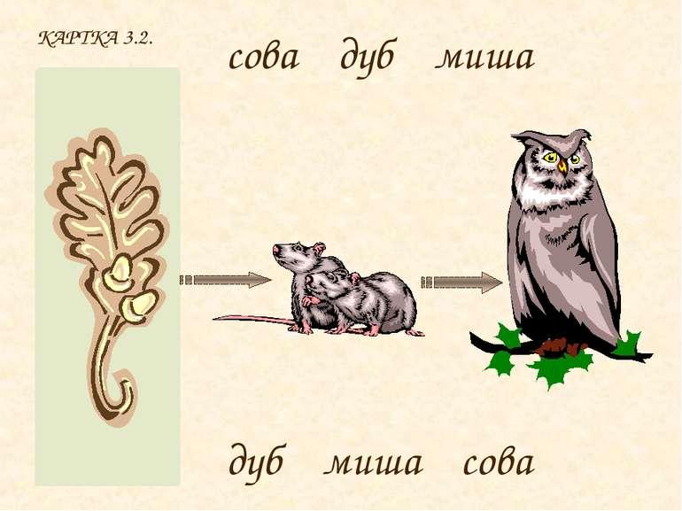 КАРТКА 3.2. сова дуб миша дуб миша сова