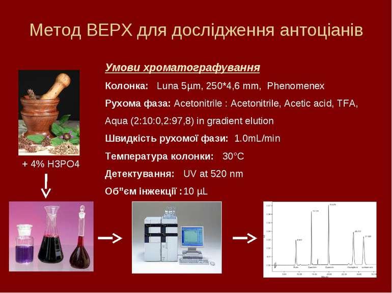 Метод ВЕРХ для дослідження антоціанів + 4% H3PO4 Умови хроматографування Коло...