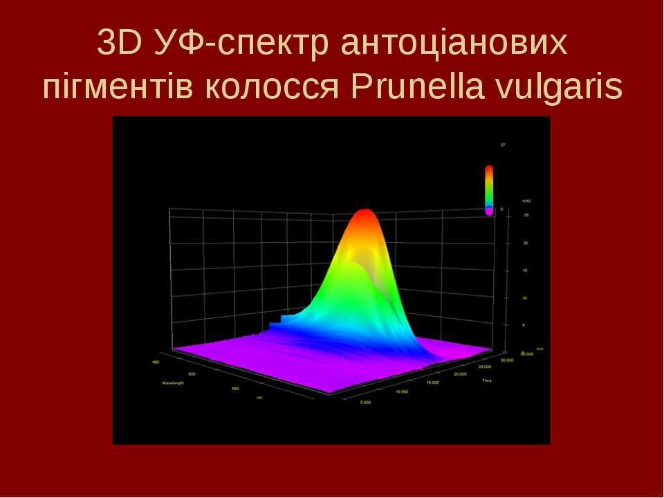 3D УФ-спектр антоціанових пігментів колосся Prunella vulgaris