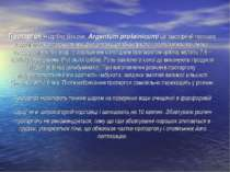 Протаргол – (срібло білкове, Argentum proteinicum) це аморфний порошок коричн...