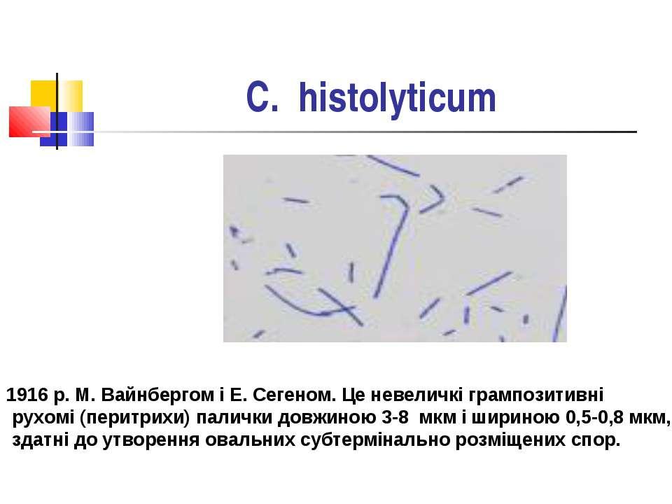C. histolyticum Мікроорганізми були вперше виділені у 1916 р. М. Вайнбергом і...