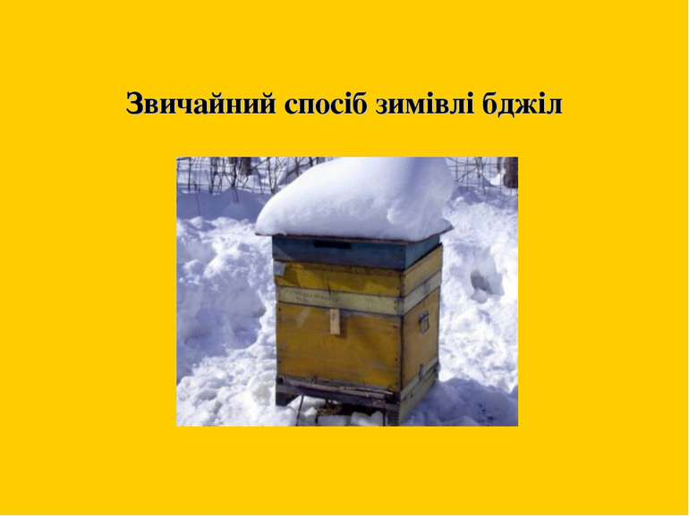 Звичайний спосіб зимівлі бджіл м. Жтитомир 2011