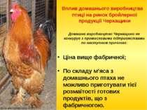 Вплив домашнього виробництва птиці на ринок бройлерної продукції Черкащини До...