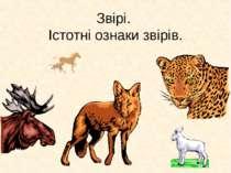 Звірі. Істотні ознаки звірів.