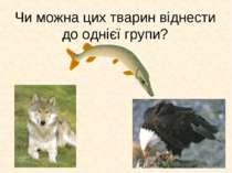 Чи можна цих тварин віднести до однієї групи?