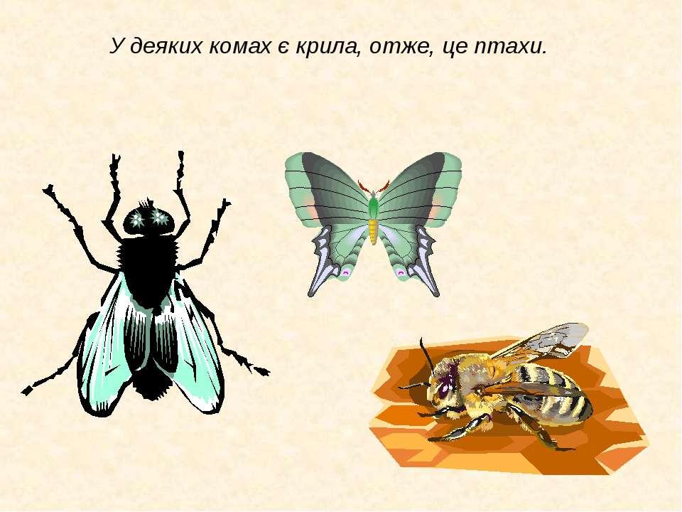 У деяких комах є крила, отже, це птахи.