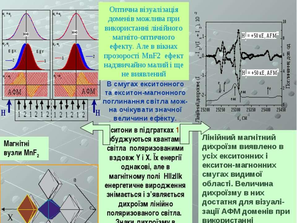 Магнітний лінійний дихроїзм в антиферомагнітному кристалі MnF2 В смугах ексит...