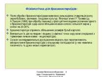 Фізіологічна дія брасиностероїдів: Після обробки брасиностероїдами виявлена с...