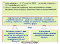 умови вирощування – 80-90% вологість, 18-21ºС – температура, обприскування фу...