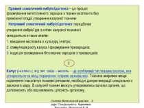 Прямий соматичний ембріоїдогенез – це процес формування вегетативного зародка...
