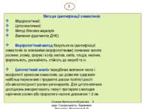 Методи ідентифікації сомаклонів: Морфологічний; Цитогенетичний; Метод білкови...
