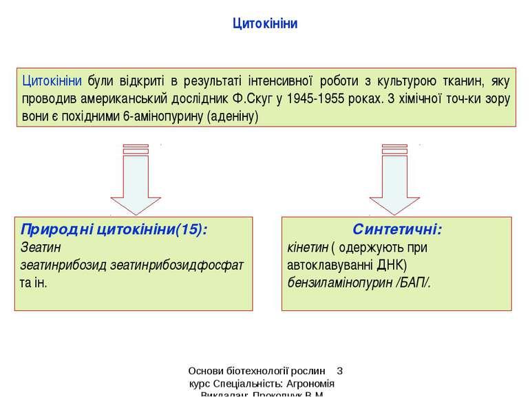 Цитокініни Цитокініни були відкриті в результаті інтенсивної роботи з культур...