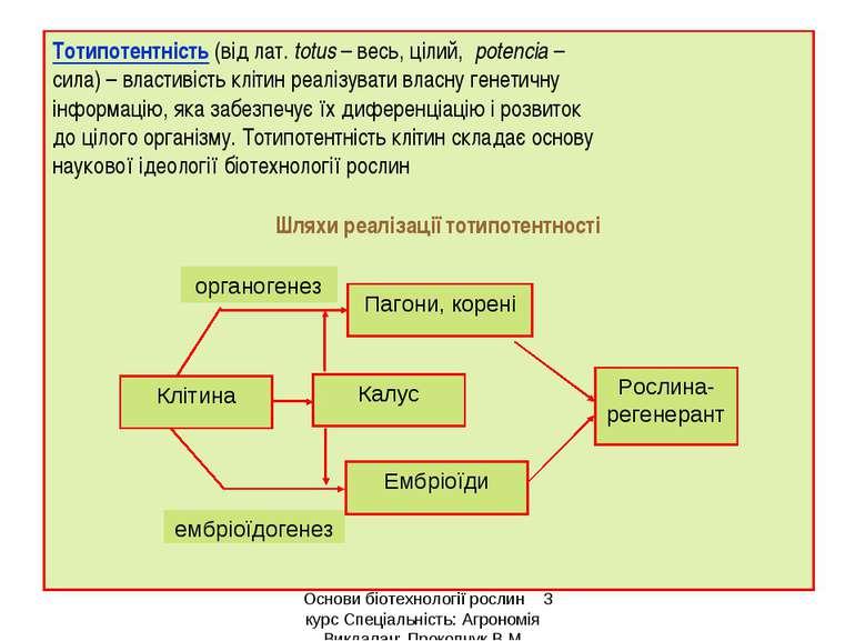 Тотипотентність (від лат. totus – весь, цілий, potencia – сила) – властивість...