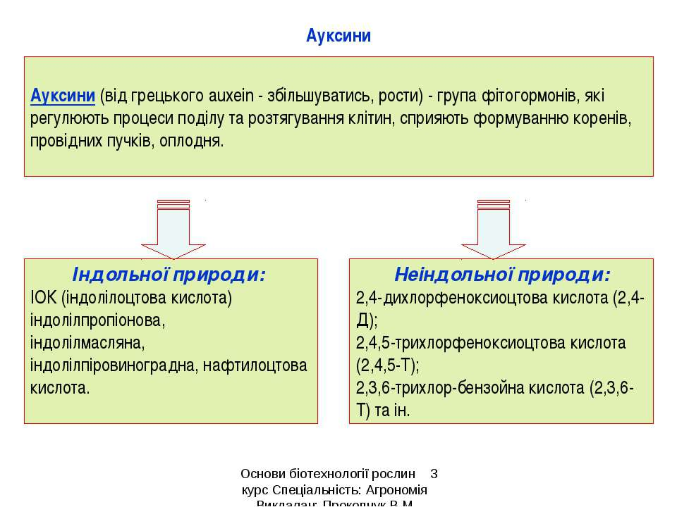 Ауксини Ауксини (від грецького аuxein - збільшуватись, рости) - група фітогор...