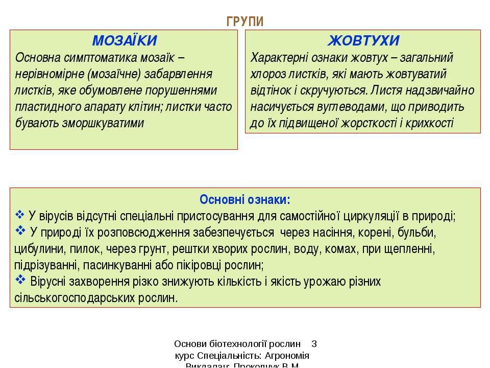 ГРУПИ МОЗАЇКИ Основна симптоматика мозаїк – нерівномірне (мозаїчне) забарвлен...