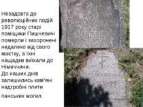 Незадовго до революційних подій 1917 року старі поміщики Пишчевичі померли і ...