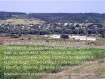 Останніми поміщиками в селі була родина Пишчевичів, які були власниками розкі...