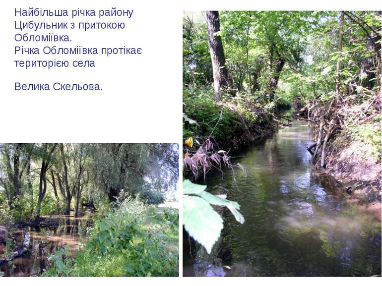 Найбільша річка району Цибульник з притокою Обломіївка. Річка Обломіївка прот...