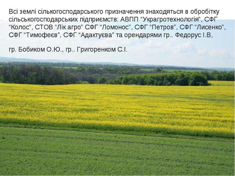 Всі землі сількогосподарського призначення знаходяться в обробітку сільського...