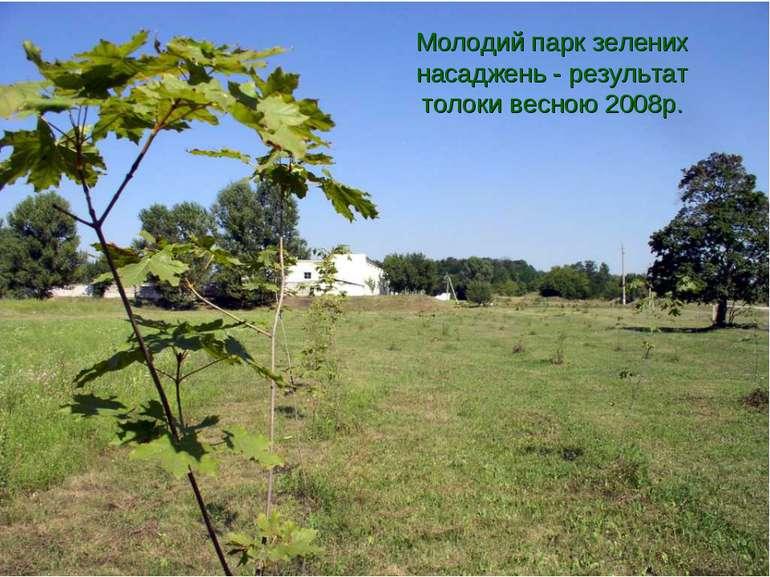 Молодий парк зелених насаджень - результат толоки весною 2008р.