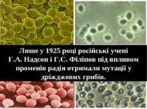 Лише у 1925 році російські учені Г.А. Надсон і Г.С. Філіпов під впливом проме...