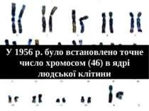 У 1956 р. було встановлено точне число хромосом (46) в ядрі людської клітини