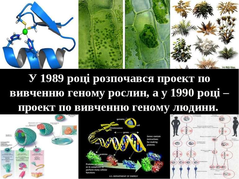 У 1989 році розпочався проект по вивченню геному рослин, а у 1990 році – прое...