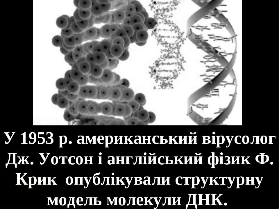 У 1953 р. американський вірусолог Дж. Уотсон і англійський фізик Ф. Крик опуб...