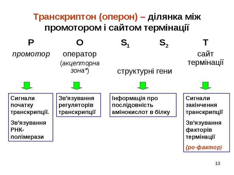 * Транскриптон (оперон) – ділянка між промотором і сайтом термінації Сигнали ...