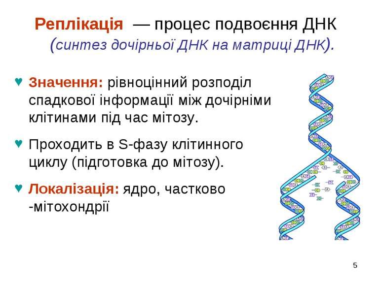 * Реплікація — процес подвоєння ДНК (синтез дочірньої ДНК на матриці ДНК). Зн...