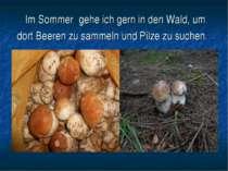 Im Sommer gehe ich gern in den Wald, um dort Beeren zu sammeln und Pilze zu s...
