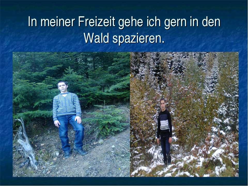 In meiner Freizeit gehe ich gern in den Wald spazieren.
