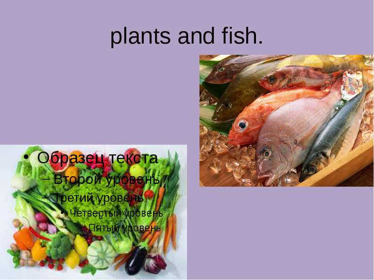 plants and fish.