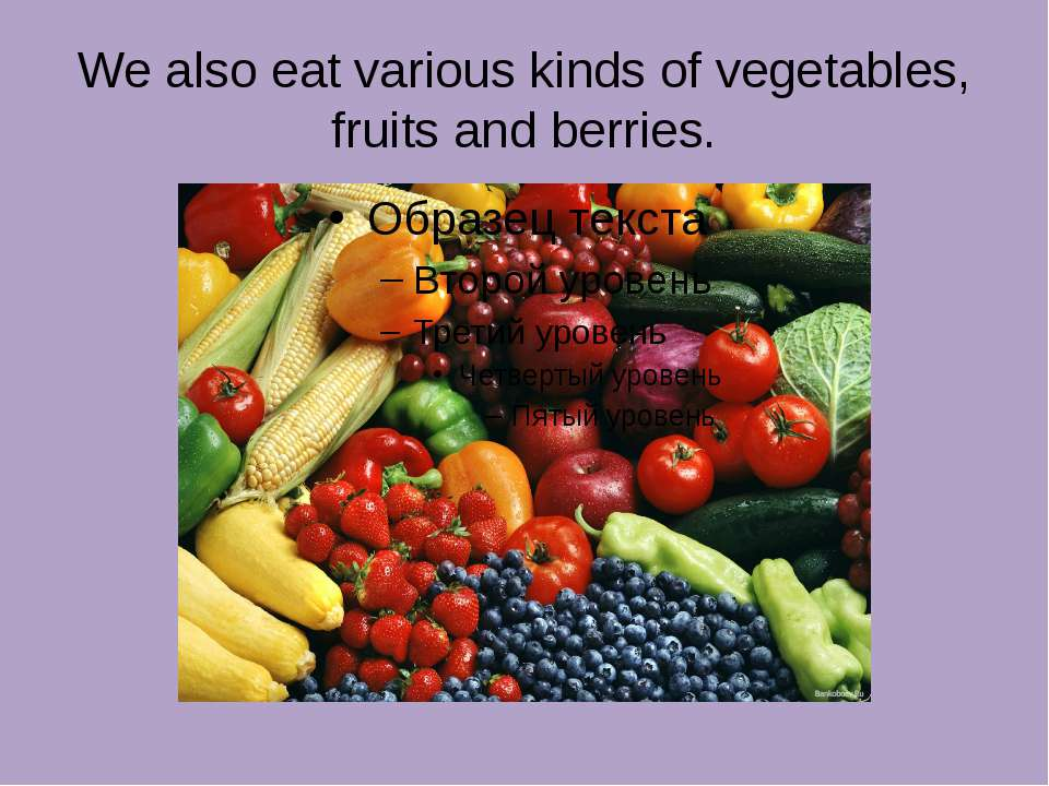 We also eat various kinds of vegetables, fruits and berries.