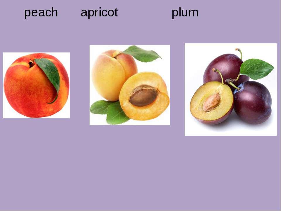 peach apricot plum