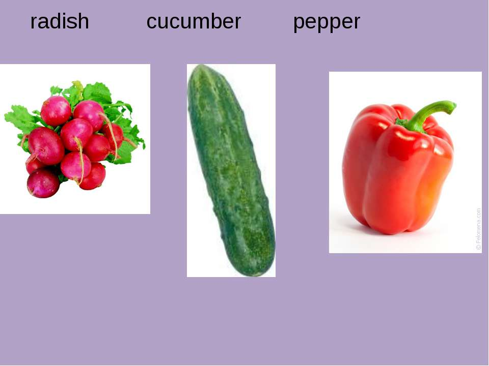 radish cucumber pepper
