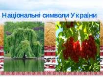 Національні символи України