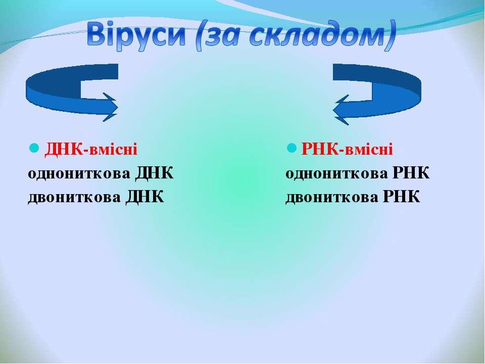 ДНК-вмісні однониткова ДНК двониткова ДНК РНК-вмісні однониткова РНК двонитко...