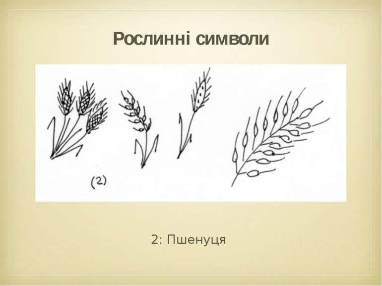 Рослинні символи 2: Пшенуця