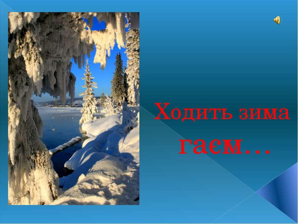 Ходить зима гаєм…