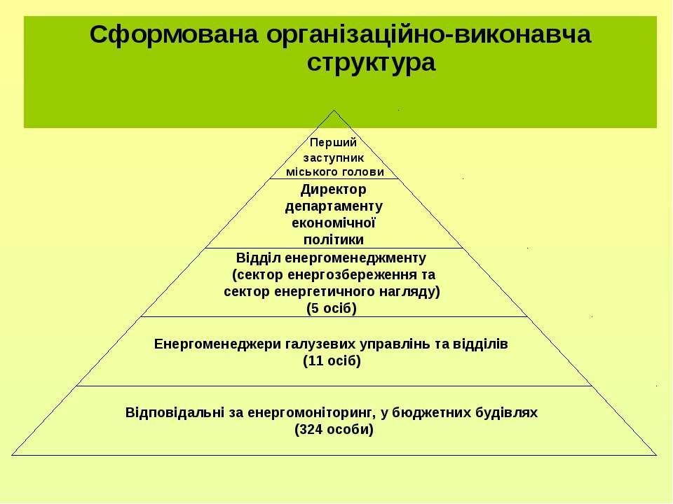Сформована організаційно-виконавча структура