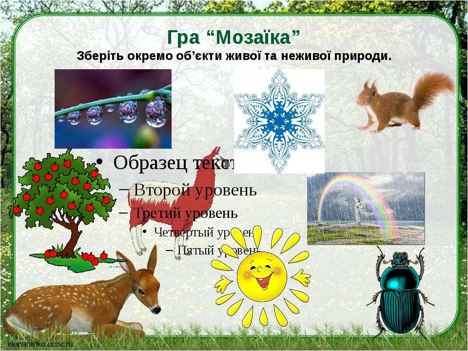 """Гра """"Мозаїка"""" Зберіть окремо об'єкти живої та неживої природи."""
