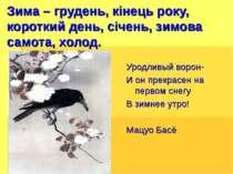 Зима – грудень, кінець року, короткий день, січень, зимова самота, холод. Уро...
