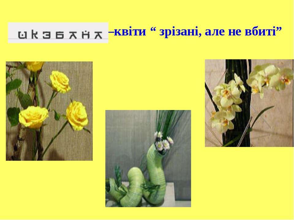 """–квіти """" зрізані, але не вбиті"""""""