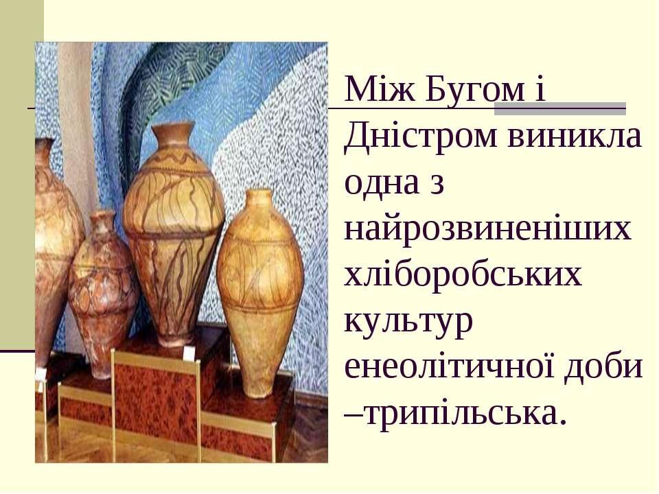 Між Бугом і Дністром виникла одна з найрозвиненіших хліборобських культур ене...