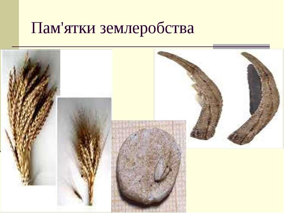 Пам'ятки землеробства