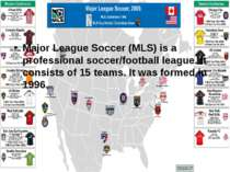 Major League Soccer (MLS) is a professional soccer/football league. It consis...