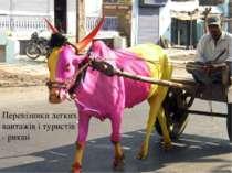 Перевізники легких вантажів і туристів - рикші