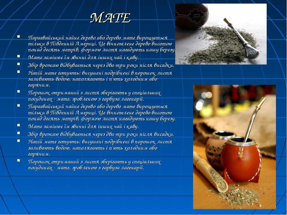 МАТЕ Парагвайський чайне дерево або дерево мате вирощується тільки в Південні...